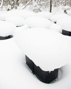 Photo of bee boxes covered in snow